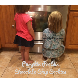 Pumpkin Protein Chocolate Chip Cookies